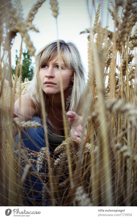 holmes Mensch Natur Jugendliche schön Sommer feminin Feld warten Erwachsene gefährlich beobachten verstecken Wachsamkeit Kornfeld Nervosität Versteck