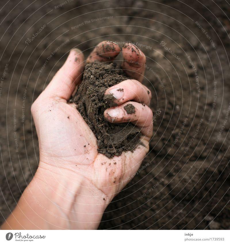 handvoll Mensch Natur Hand Erwachsene Leben natürlich braun Erde dreckig weich Urelemente festhalten Gartenarbeit Sinnesorgane nehmen Graben