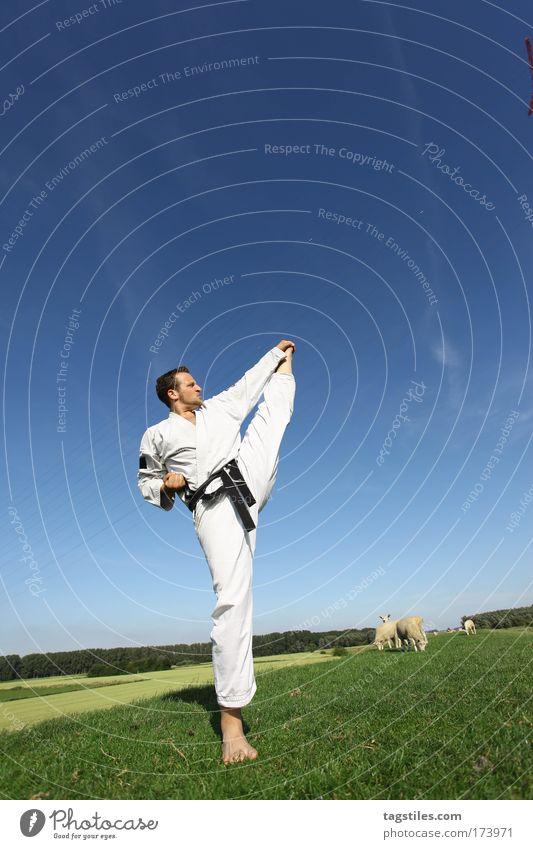... KICK Mann Hand Sport Gesundheit maskulin hoch Aktion Sport-Training sportlich üben Kampfsport Faust treten Karate Kick Athlet