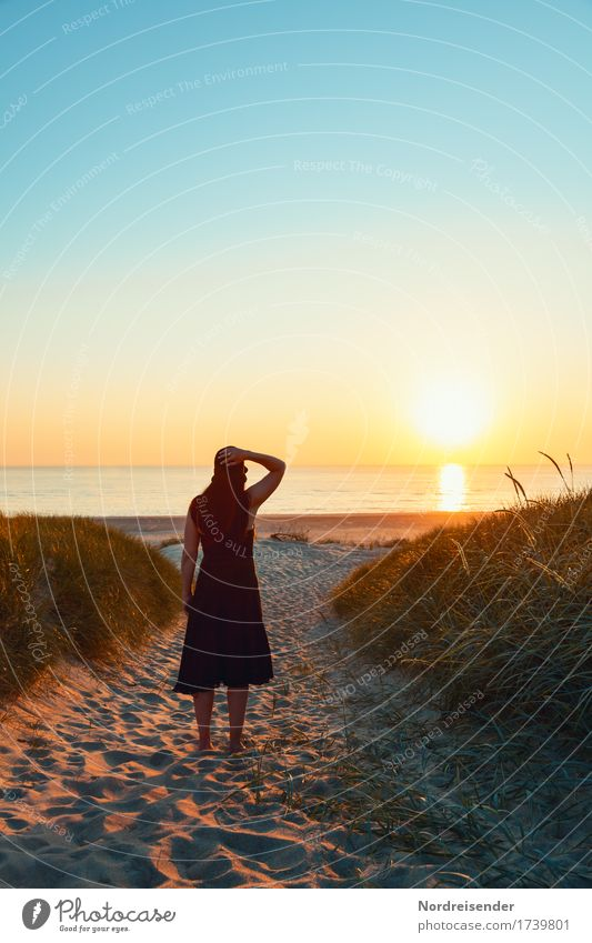 Meerblick Mensch Frau Ferien & Urlaub & Reisen Sommer Wasser Erholung ruhig Strand Erwachsene feminin Freiheit Sand Idylle Lebensfreude Schönes Wetter