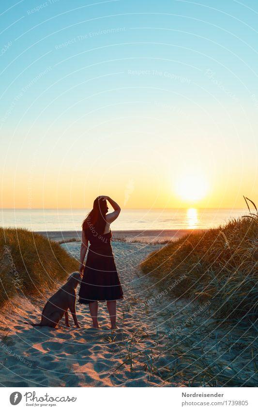 Abends am Meer Frau Mensch Ferien & Urlaub & Reisen Natur Hund Sommer Landschaft ruhig Ferne Strand Lifestyle Erwachsene feminin Gras Tourismus