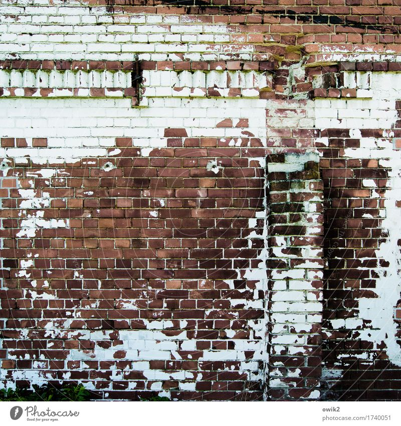 Bei uns wären es Falten Wand Gebäude Mauer Fassade Dekoration & Verzierung Vergänglichkeit historisch Bauwerk verfallen Verfall Backstein trashig schäbig Ruine