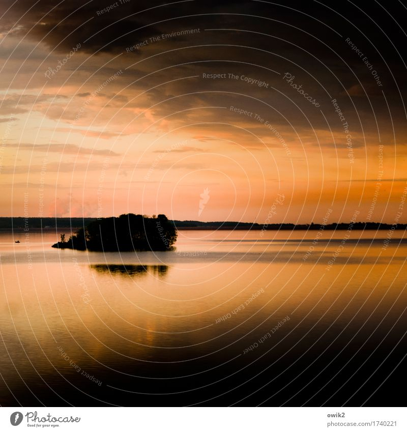 In der Strömung Umwelt Natur Landschaft Urelemente Luft Wasser Himmel Wolken Horizont Klima Schönes Wetter Baum Insel See leuchten glänzend Stimmung ruhig