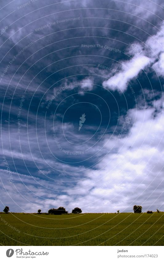 leicht bewölkt Natur Himmel Baum blau Pflanze Sommer Wolken Ferne Erholung Landschaft Feld Wetter Umwelt Zeit Erde Klima