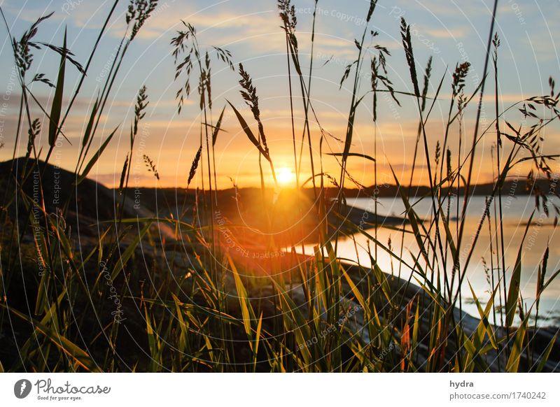 Sonnenuntergang  am Meer mit Gegenlicht in den Schären in Schweden Sonnenaufgang Schönes Wetter Sommer Ostsee harmonisch Wohlgefühl Zufriedenheit Sinnesorgane