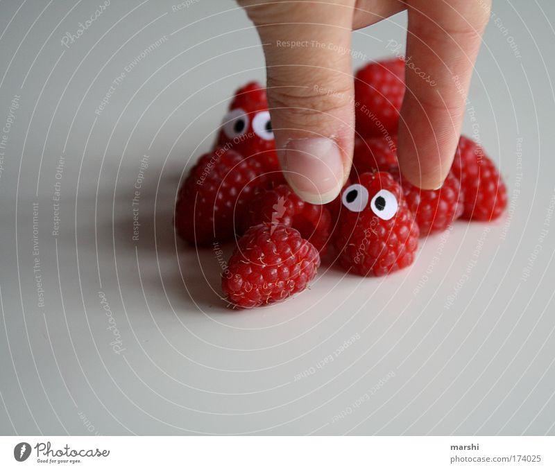 Himbeere in Gefahr Hand rot Gesicht Auge Ernährung Gefühle Angst Gesundheit Essen Lebensmittel Frucht Finger frisch bedrohlich lecker Appetit & Hunger