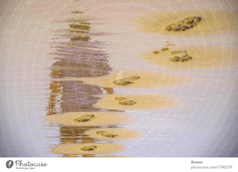 kommen und gehen Mensch blau Wasser Einsamkeit ruhig Strand Erwachsene Wege & Pfade Fuß braun Sand maskulin nachdenklich Körper 45-60 Jahre