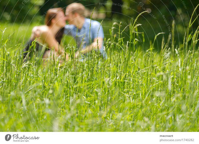 Frühlingsgefühle Frau Natur Mann Sommer Liebe Gefühle Wiese Gras feminin Junge Paar maskulin sitzen Liebespaar Dame