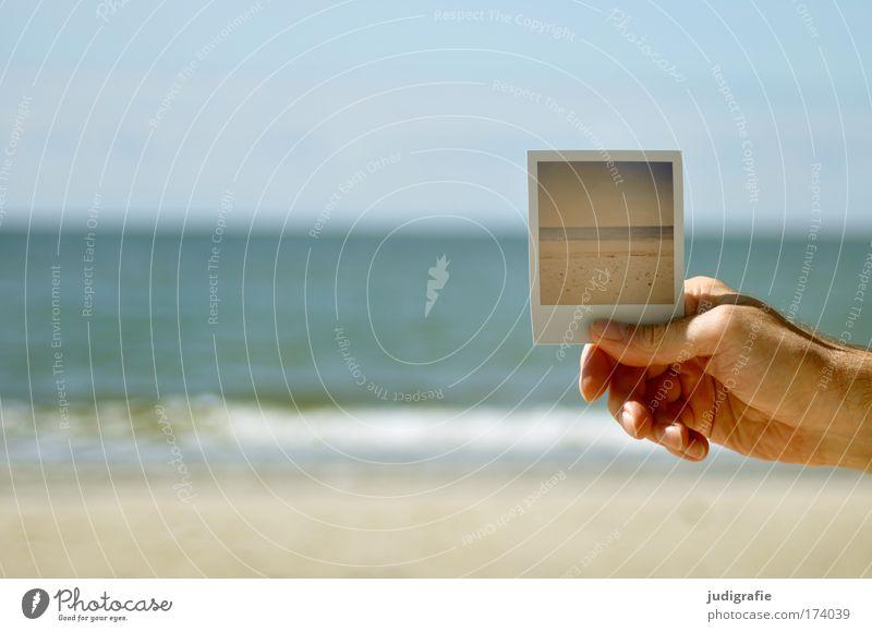 Ostsee Natur Hand Himmel Strand Ferien & Urlaub & Reisen Polaroid Küste Fotografie maskulin Umwelt Horizont Ausflug Tourismus Meer festhalten Ostsee