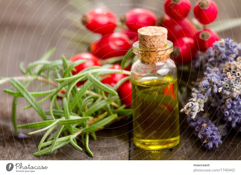 Pflanzenöl Natur natürlich Lebensmittel Ernährung Kräuter & Gewürze Wellness Wohlgefühl Holzbrett Körperpflege Lavendel Fett Öl Hundsrose Spa Rosmarin