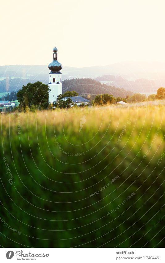 Bayerischer Wald Zwiebelturm Landschaft Wolkenloser Himmel Sommer Schönes Wetter Gras Feld Hügel Bayern Dorf Menschenleer Kirche Turm Kirchturm Erholung