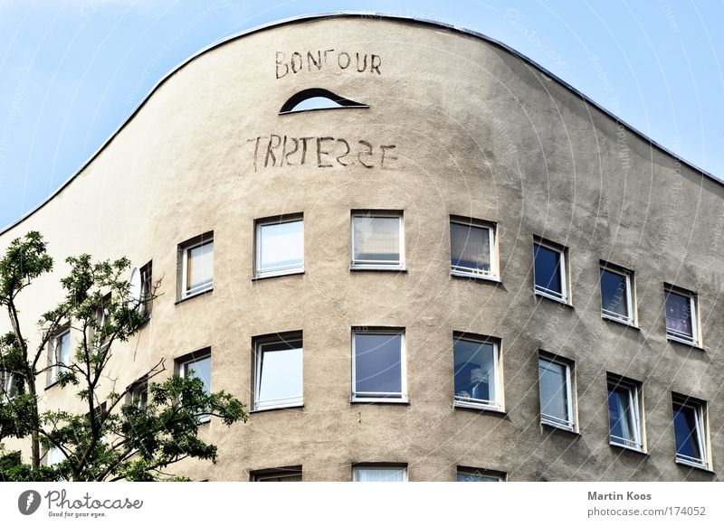 bonjour tristesse Baum Haus Fenster Wand Architektur Graffiti Gebäude Mauer Fassade Wohnung Häusliches Leben trist Schriftzeichen Perspektive Armut Berlin