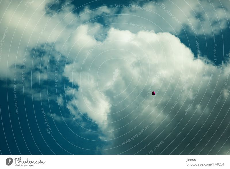Die große Freiheit Farbfoto Außenaufnahme Textfreiraum links Textfreiraum oben Kontrast Sonnenlicht Luft nur Himmel Wolken Luftballon Feste & Feiern fliegen