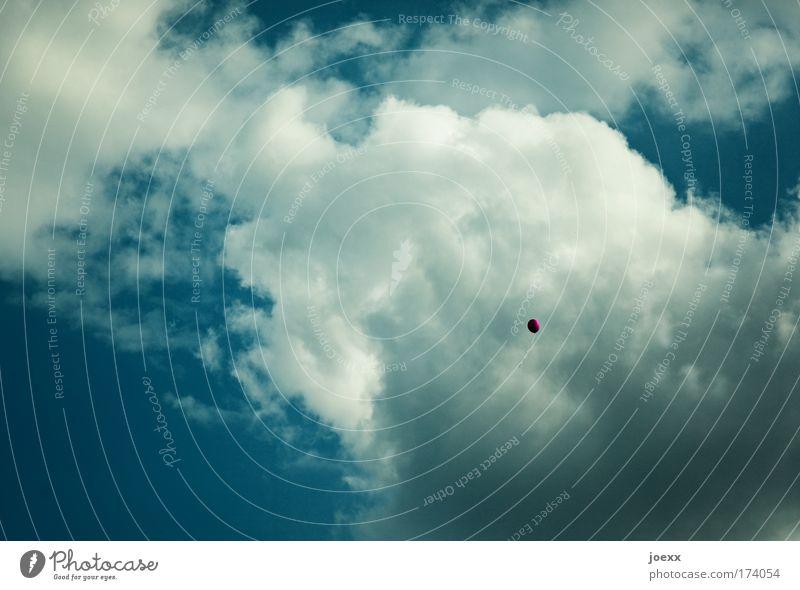 Die große Freiheit Wolken Ferne Spielen Luft Feste & Feiern fliegen Erfolg frei Fröhlichkeit Luftballon Unendlichkeit aufsteigen nur Himmel