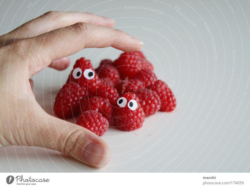Jetzt gibts Himbeerkuchen! Hand rot Gesicht Auge Gefühle Essen Gesundheit Frucht Angst Lebensmittel gefährlich Ernährung Finger genießen fangen Appetit & Hunger