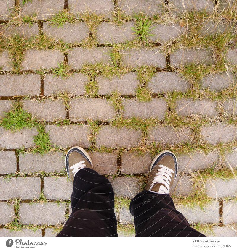 Stehenbleiben. Umdrehen. Erklären. Mensch grün Pflanze schwarz Gras grau Fuß Wege & Pfade Beine Zufriedenheit warten Umwelt Sicherheit stehen authentisch Vertrauen