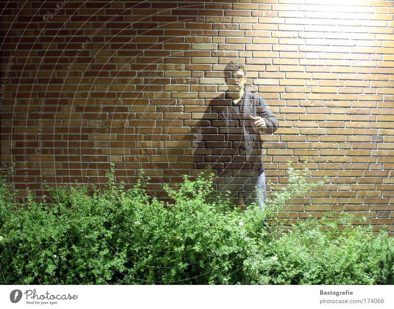 davic copperfield Mensch dunkel träumen Mauer stehen Sträucher Backstein durchsichtig Geister u. Gespenster Zauberei u. Magie Alptraum Nachtaufnahme Zauberer