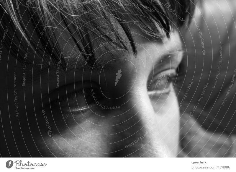 pony view Mensch Jugendliche Gesicht Erwachsene Auge Kopf Haare & Frisuren Haut Nase trist 18-30 Jahre Junge Frau brünett Pony Trägheit