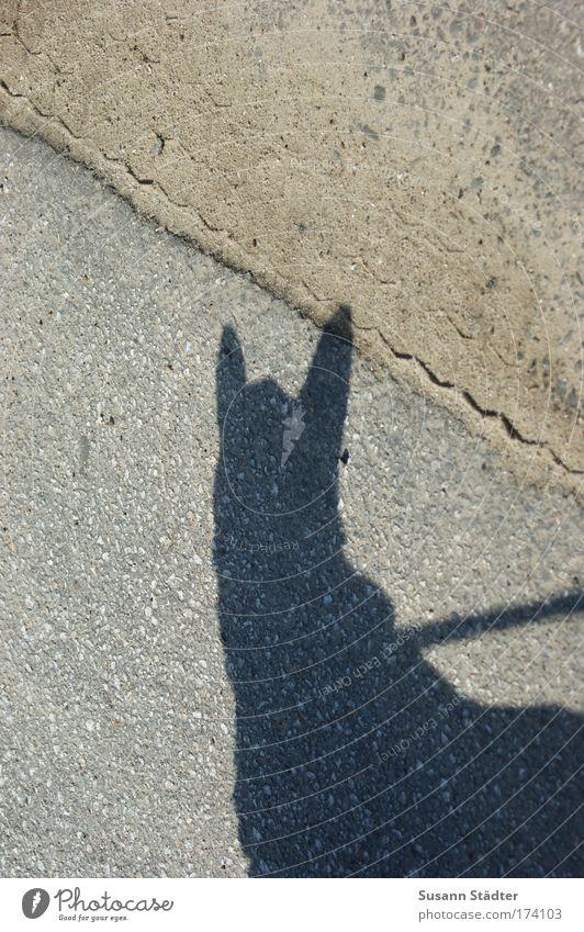 Pfiffi des Mr Spock II Außenaufnahme abstrakt Menschenleer Textfreiraum links Textfreiraum unten Textfreiraum Mitte Licht Schatten Kontrast Silhouette