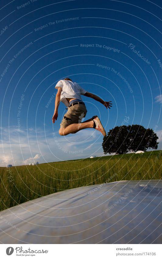 Abflug Mensch Himmel Natur Jugendliche Baum Pflanze Sommer Freude Wolken Erwachsene Umwelt Landschaft Schuhe Feld Freizeit & Hobby fliegen