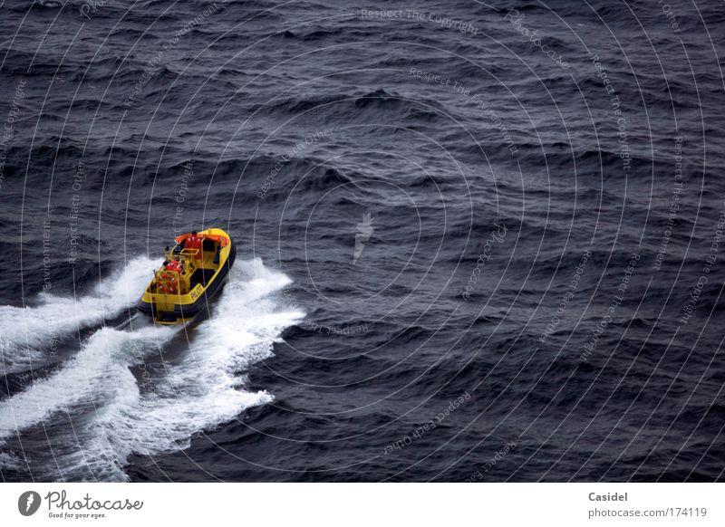Lotsenboot Mensch blau gelb Bewegung Wasserfahrzeug Arbeit & Erwerbstätigkeit maskulin Verkehr Geschwindigkeit Hilfsbereitschaft Sicherheit fahren