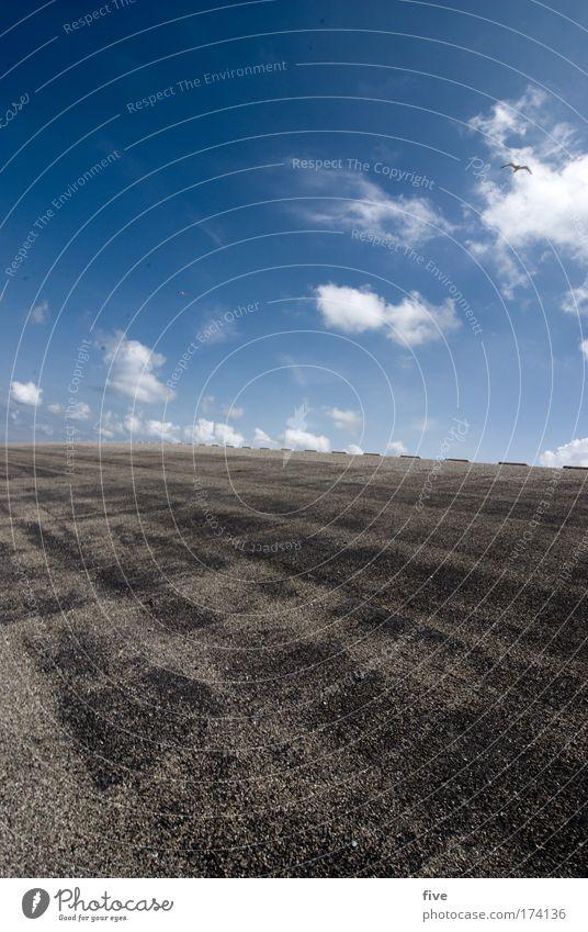 westkapelle_II_zeeland Himmel Sonne Sommer ruhig Wolken Landschaft Zufriedenheit Erde Küste Wind Wetter Umwelt Horizont Asphalt Schönes Wetter Nordsee