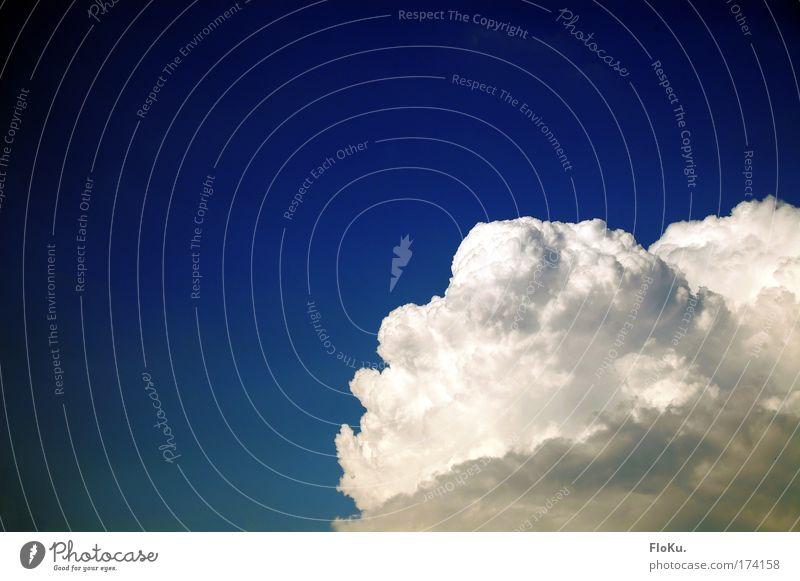 Es braut sich was zusammen Himmel weiß blau Sommer Wolken Luft Wetter Umwelt gefährlich Klima Gewitter Unwetter Urelemente Klimawandel Kumulus Gewitterwolken