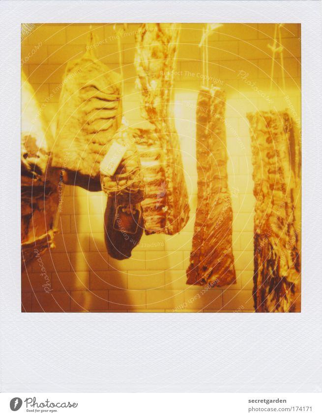 für die aasgeier mit textfreiraum unten. Ernährung gelb kalt Lebensmittel authentisch Gastronomie gruselig Restaurant genießen skurril Fleisch bizarr Surrealismus Polaroid Abendessen Ausstellung