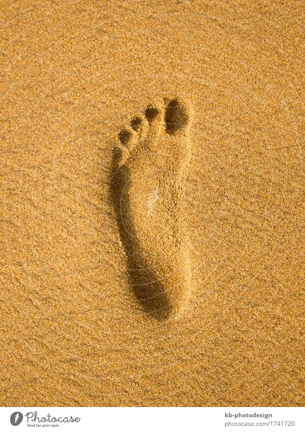 Footprint at the beach in Sri Lanka Erholung Ferien & Urlaub & Reisen Tourismus Strand Sand sunny footprint footprints barefoot time-out sight sea sky landscape