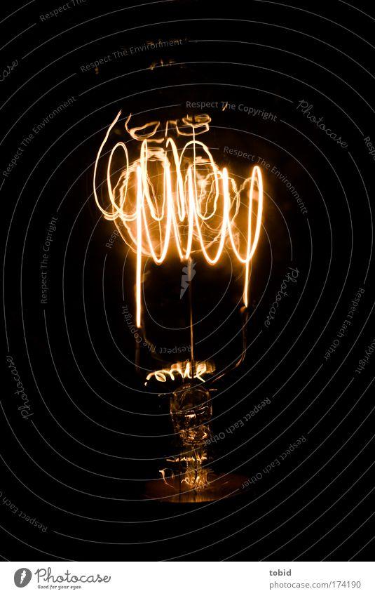 Glühbirne Kohledraht Technik & Technologie Wissenschaften Energiewirtschaft Inspiration Licht Farbfoto Nahaufnahme Erfindung dunkel erleuchten glühen Glühdraht
