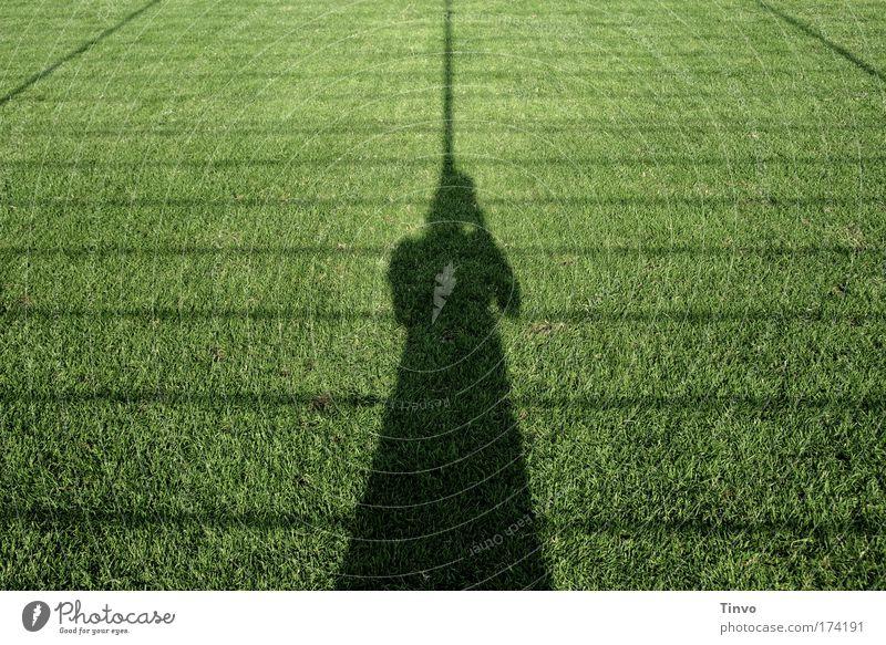 schwarze Witwe Frau Mensch Natur grün Sommer Erwachsene Einsamkeit Wiese Gras Traurigkeit Frühling Linie Streifen Rasen Netz Publikum