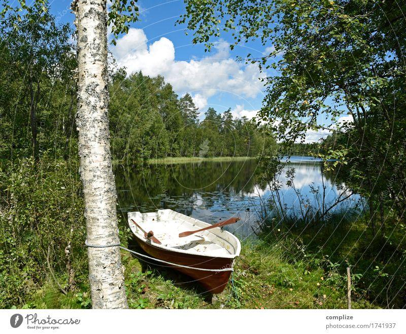 Plötzlich am See Wellness Freizeit & Hobby Angeln Ferien & Urlaub & Reisen Freiheit Sommer Sommerurlaub Sonne Umwelt Natur Landschaft Himmel Wolken Pflanze Baum