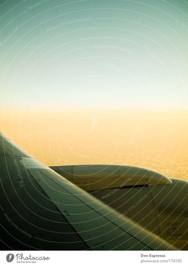 Über den Wolken Farbfoto Menschenleer Textfreiraum oben Luftverkehr Flugzeug Passagierflugzeug im Flugzeug Ferien & Urlaub & Reisen Himmel fliegen Flügel