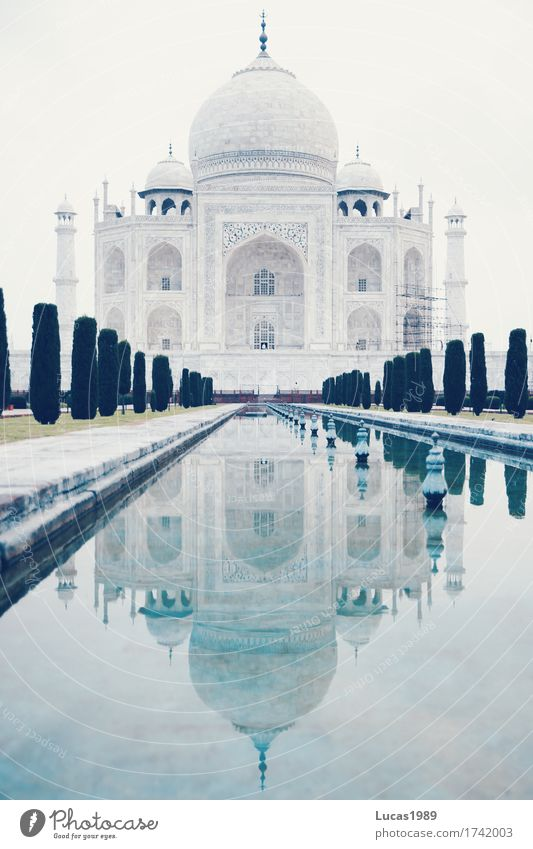 Taj Mahal früh am Morgen Ferien & Urlaub & Reisen blau weiß Baum Architektur Gebäude Kunst Sträucher Abenteuer Macht Bauwerk Schwimmbad entdecken Asien Fernweh
