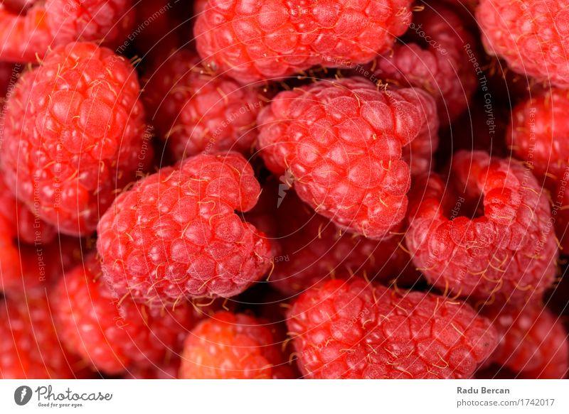 Rote Himbeerfrüchte Farbe schön Gesunde Ernährung rot Essen Gesundheit Lebensmittel Frucht Energie süß einfach rein Bioprodukte Frühstück exotisch