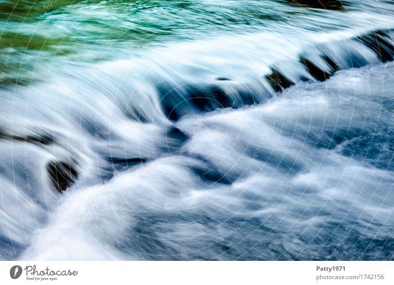 Wildes Wasser Natur Bach Fluss Wasserfall Stromschnellen nass grün türkis ruhig Energie Erholung Geschwindigkeit rein Umwelt Farbfoto Außenaufnahme Tag