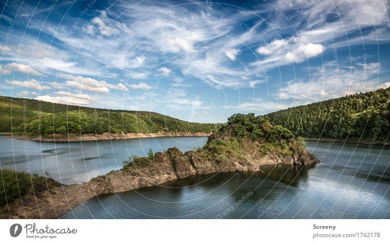Fast wie ein Fjọrd Natur Landschaft Pflanze Urelemente Wasser Himmel Wolken Sommer Schönes Wetter Baum Sträucher Hügel Felsen Seeufer Eifel Talsperre blau