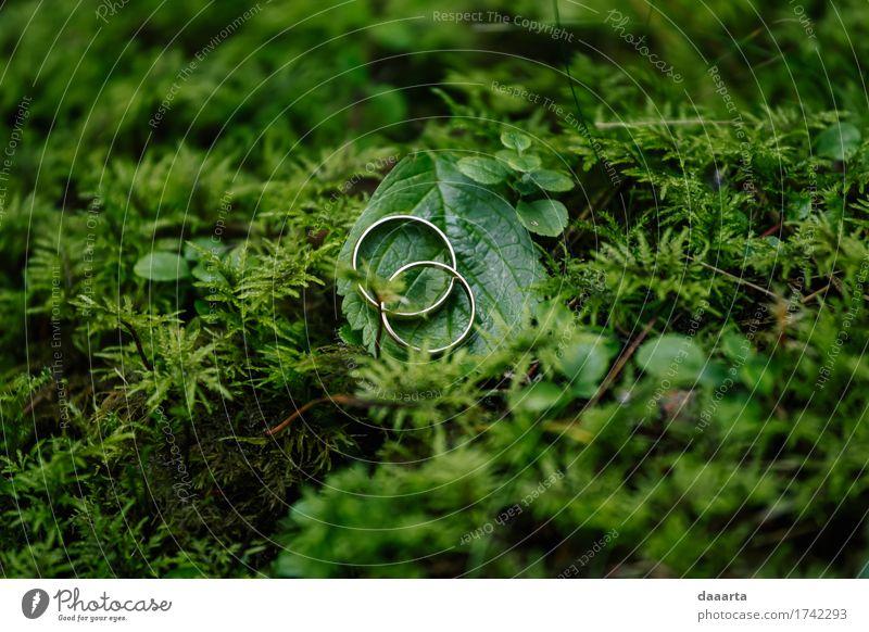 Trauringe grün Lifestyle elegant Stil Design Freude Leben harmonisch Freizeit & Hobby Spielen Sommer Veranstaltung Feste & Feiern Hochzeit Schmuck Ring Ehering