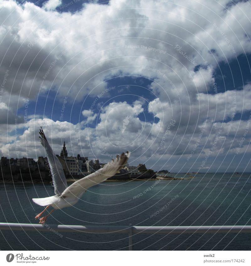 3 - 2 - 1 - Liftoff Urelemente Wasser Himmel Wolken Klima Schönes Wetter Wind Küste Meer Roscoff Finistere Bretagne Atlantik Frankreich Haus Kirche Gebäude