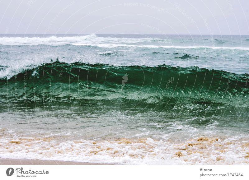 umwerfend Ferien & Urlaub & Reisen blau grün Wasser Meer Strand Bewegung Sand Wellen Kraft Geschwindigkeit bedrohlich Abenteuer stark Respekt beige