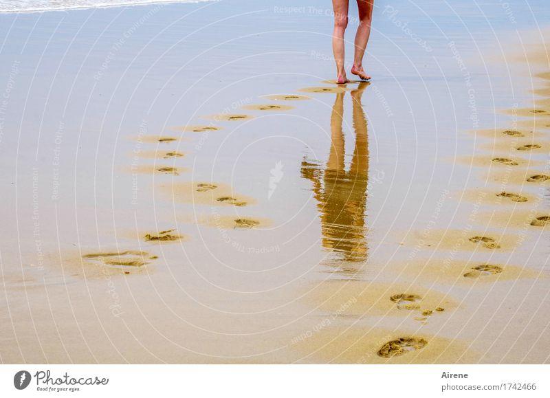 weiter, immer weiter Sommerurlaub Strand Meer Mensch feminin Junge Frau Jugendliche Beine Fuß 1 18-30 Jahre Erwachsene Urelemente Wasser Schönes Wetter Küste