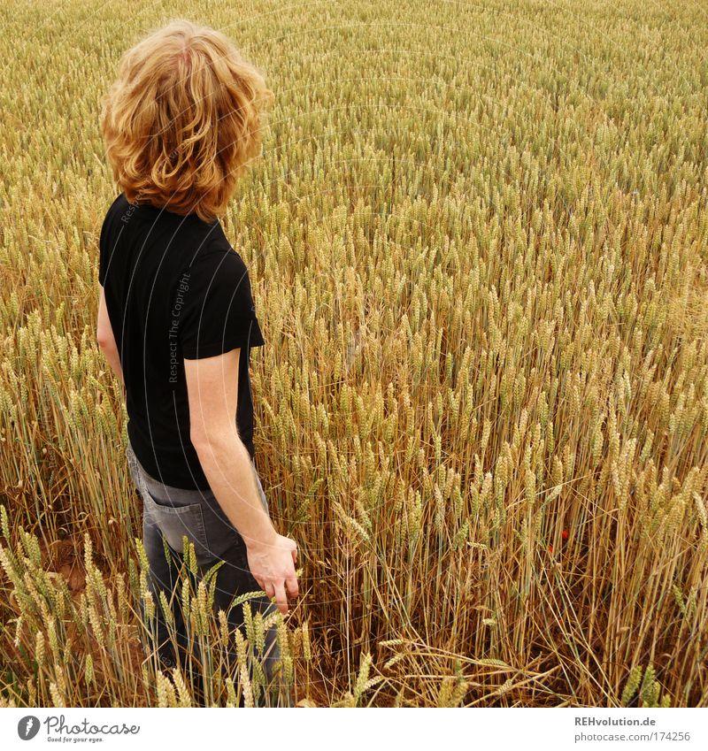 Fühlen Sie das Feld ? Mensch Natur Jugendliche ruhig gelb Landschaft Kraft Feld blond Erwachsene maskulin gold Hoffnung Coolness Zukunft stehen
