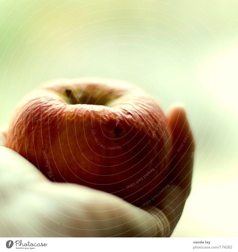 Nicht mehr ganz frisch Natur alt Hand schön Essen Gesundheit Frucht Lebensmittel Haut Zufriedenheit Ernährung Hautfalten Apfel dünn Appetit & Hunger
