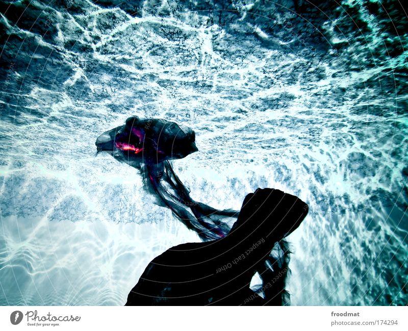 wunder der tiefsee Farbfoto mehrfarbig Innenaufnahme Unterwasseraufnahme Experiment Licht Sonnenlicht Sonnenstrahlen Qualle beobachten träumen außergewöhnlich