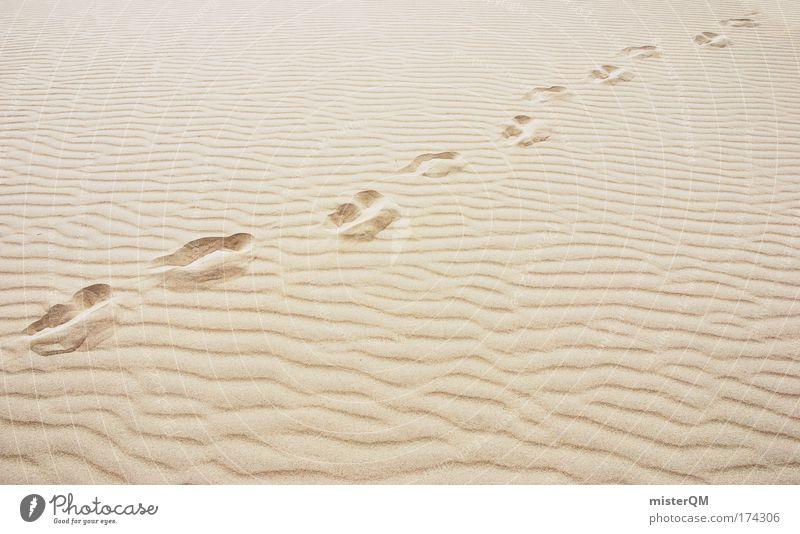 Explore. Ferien & Urlaub & Reisen Einsamkeit Bewegung Wege & Pfade Wärme Sand Armut Erfolg Zeit Energiewirtschaft ästhetisch Abenteuer Ende Ziel Wüste Spuren