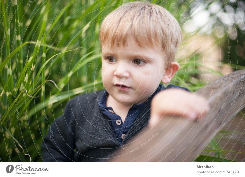 Entdecker Kind Kleinkind Junge Kindheit 1-3 Jahre beobachten entdecken träumen Brückengeländer Geländer Garten Sohn blond Blick laufen stehen Pampasgras