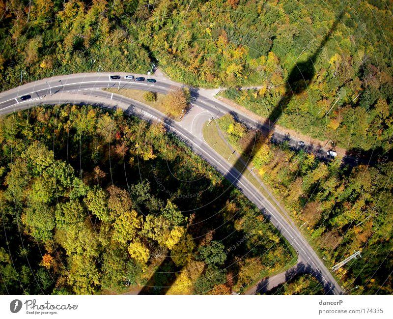 Turmschatten Natur Sommer Baum Landschaft Wald Straße Wege & Pfade PKW hoch Spitze Aussicht Kurve Höhe Straßenkreuzung Fernsehturm