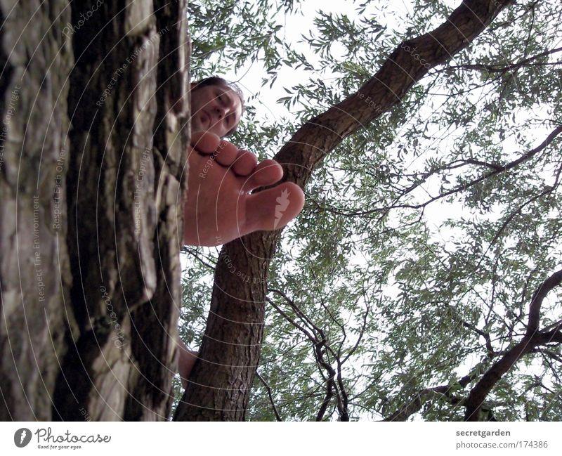 das leben auf großem fuss. Mensch Baum Ferien & Urlaub & Reisen Meer Sommer Strand Erwachsene Leben Spielen Freiheit Holz Kopf Park Fuß Ausflug maskulin