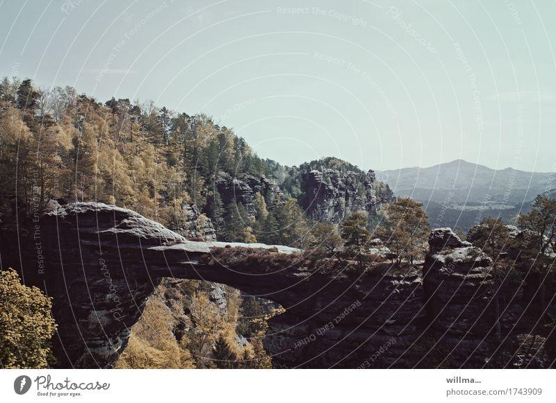 überbrückung Natur Landschaft Berge u. Gebirge Felsen hoch Tschechien Felsentor Böhmische Schweiz