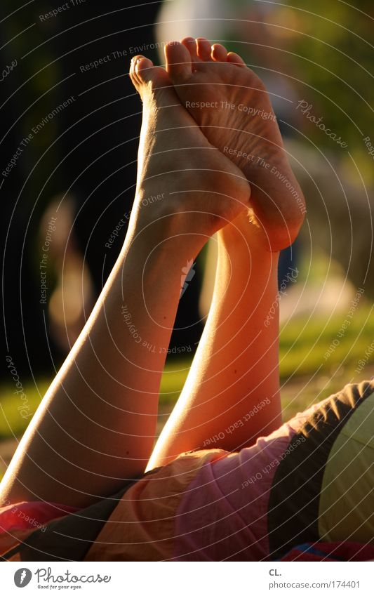 sommer09 Mensch Kind Jugendliche Sonne Sommer Freude Erwachsene Erholung Wiese Wärme Glück Beine Fuß Zufriedenheit Freizeit & Hobby Haut